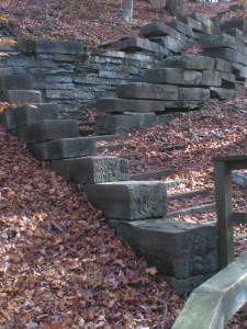 Amazing Stone Stairs inviting hikers to explore the forest.