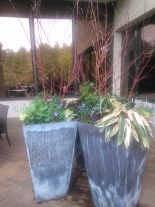 Patio Urns @1800